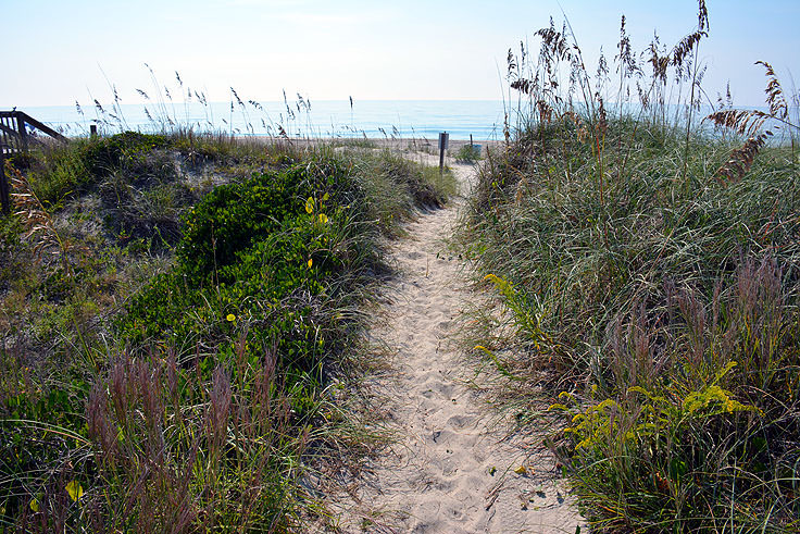 Beach access over the dunes in Emerald Isle, NC