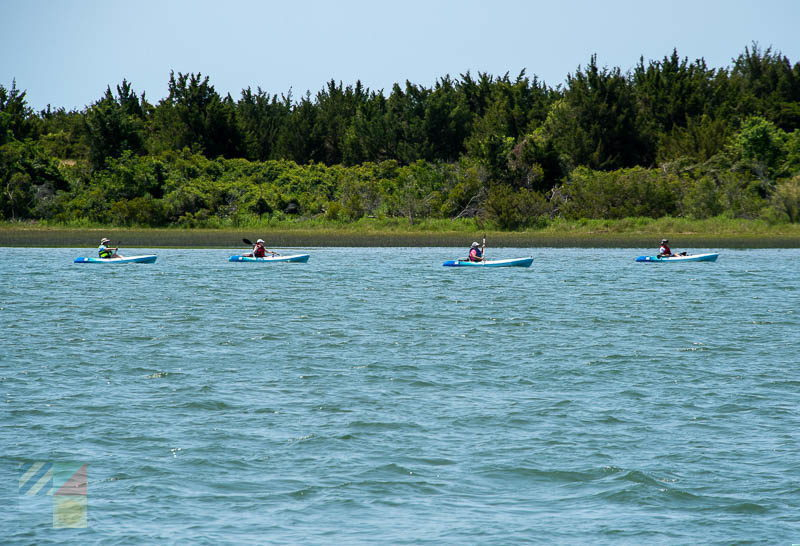 Kayakers in front of the Rachel Carson Reserve